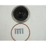 Red Lion 305446943 Formerly item #469147 Kit/Degrease Seal Plate JET, Also replaces 269147