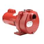 Red Lion 614670 RLSP-75 Sprinkler Pump 115/230V 3/4HP