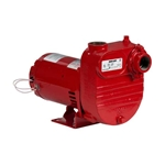 Red Lion 621826 RL-S75 Utility Pump 3/4 HP 115/230V