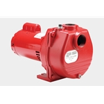 Red Lion 614676 RLSP-200 BI 2 HP Self-Priming Sprinkler Pump with Brass Impeller