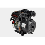 Red Lion 617070 6RLPG-2U AF Chemical & Transfer Pump