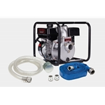 Red Lion 617030 Aluminum Water Transfer Pump Kit