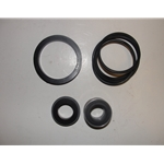 Red Lion  305606012 Seal Kit for all RL-SPRK pumps