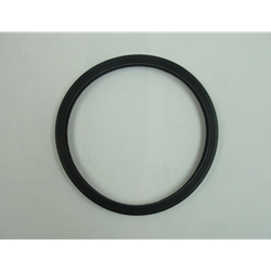 517507 Little Giant  Lens Gasket for L1C-20 Underwater Lights (Formerly Cal Pump item 12016)